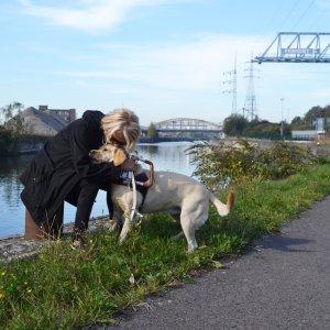 Fondation I See chien chien-guide guide autonomie mobilité aveugle déficience (...)